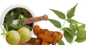 Ghee for Ayurvedic Medicines