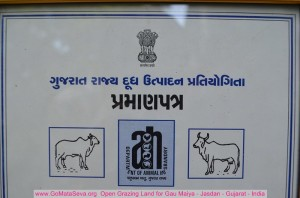 Best_cow_india_certificates_Gir_Jasdan (6)