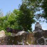 visit-hingolgadh-jasdan-gir-gujarat-india (24)