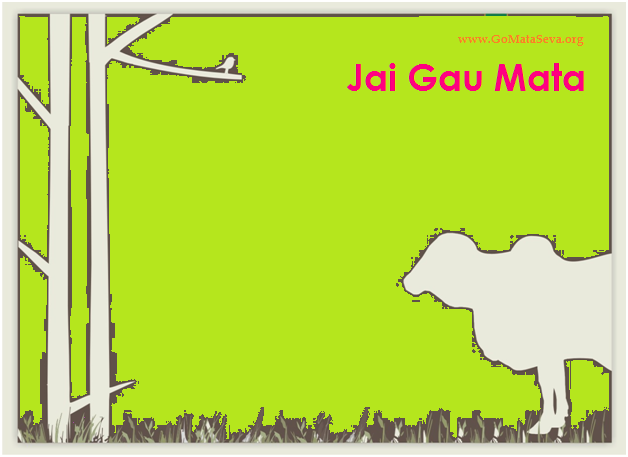 Jai Gau Mata - Serve Cow To Save Yourself