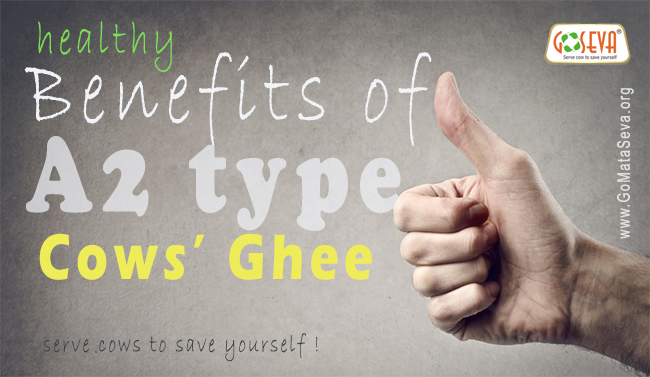 benefits-a2-cow-ghee-gomataseva