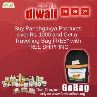 GoBag-Diwali16-325